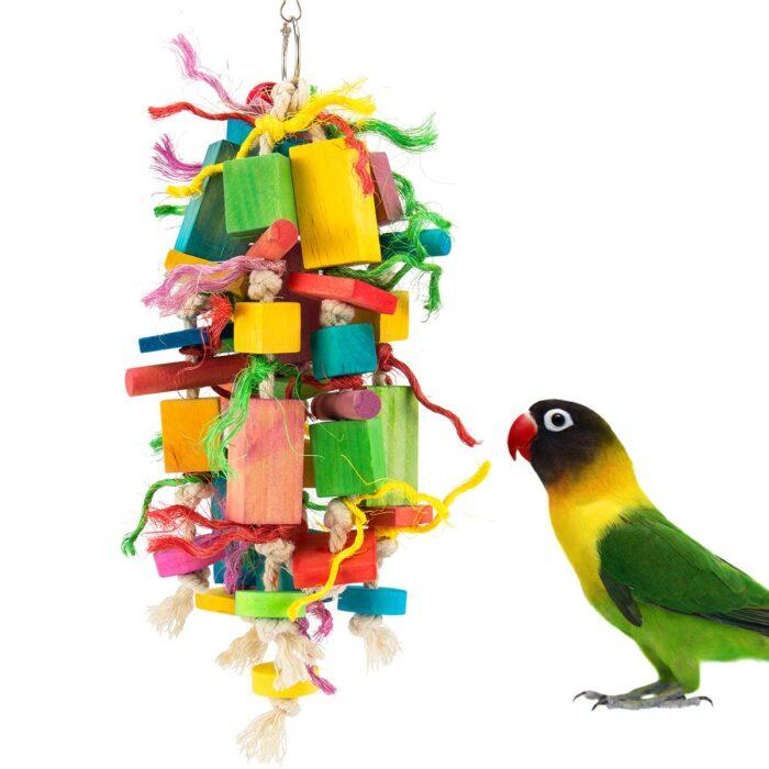 Papagoi mänguasjad
