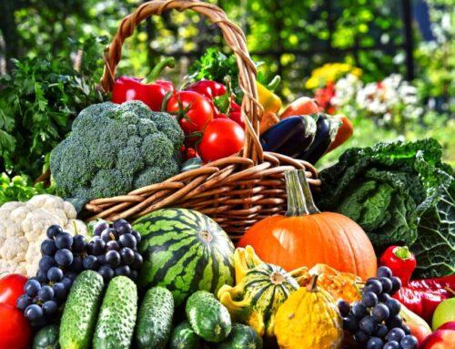 Papagoide tervisele vajalikud vitamiinid ja mineraalid